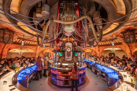 https://www.denofgeek.com/us/culture/283197/ogas-cantina-star-wars-galaxys-edge