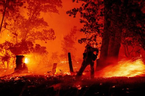 Firefighters fight wildfire caused by a faulty gender reveal. (Photo Credit: Josh Edelson)